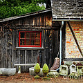 The Shed At Monches Farm by Mary Machare