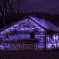 The Shed by Bonfire Photography