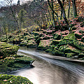 The Shimmering Strid by Chris Frost