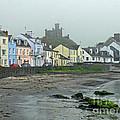 The Shores Of Ireland by Brenda Brown