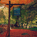 The Sign Of Fall Colors by Jeff Folger