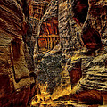 The Siq Path Slot Canyon  by Vladimir Rayzman