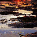 The Sky In The Mud At Low Tide by Daniel Woodrum