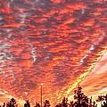 The Sky Is On Fire by Scott Delano