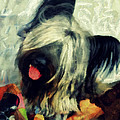 The Skye  Terrier Tilt   by Janice MacLellan
