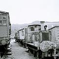 The Steam Train by Shaun Higson