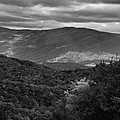 The Smokies In Black And White by Dan Sproul