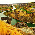 The Snake River  by Jeff Swan