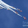 The Snowbirds In Harmony by Bob Christopher