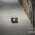 The Solitary Seat by Cindy Manero