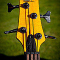 The Soundgear Guitar By Ibanez by David Patterson