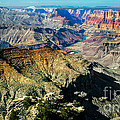 The South Rim by Robert Bales