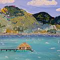 The South Seas by Phyllis Kaltenbach