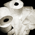 The Spare Rolls 2 - Toilet Paper - Bathroom Design - Restroom - Powder Room by Andee Design