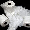 The Spare Rolls 3 - Toilet Paper - Bathroom Design - Restroom - Powder Room by Andee Design