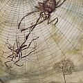The Spider And The Fly by Arthur Rackham