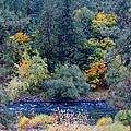 The Spokane River In The Fall Colors by Ben Upham III