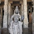 The Sri Meenakshi Temple by Robert Preston