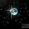The Star by Shasta Eone