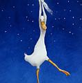The Starcatcher... by Will Bullas