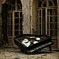 The Stone Sphere And Broken Grand Piano by Jaroslaw Blaminsky