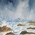The Storm by Carol Luzzi