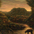 The Stream by James W Johnson
