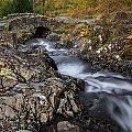 The Stream by Tomas Urban