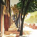 The Street by Alyssa Kerr
