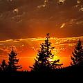 The Sun Retreats by Kathy Sampson