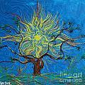 The Sun Tree by Stefan Duncan