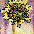 The Sunflower by Odon Czintos