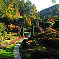 The Sunken Garden by Lynn Bauer