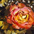 The Sweetest Rose 1 by Angelina Vick