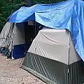 The Tail Of 2 Tents by Wendy Hall