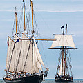 The Tall Ships by Dale Kincaid