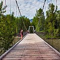 The Tawkes Foster Suspension Bridge by Omaste Witkowski