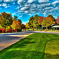 The Tear Drop Lawn At The Sagamore Resort by David Patterson