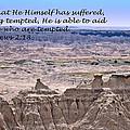 The Temptation Of Jesus Hebrews 2 18 by Barb Dalton