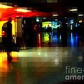 The Terminal - Train Stations Of New York by Miriam Danar