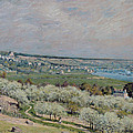 The Terrace At Saint Germain by Alfred Sisley