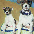 The Terriers by Terry Lewey