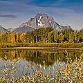 The Tetons And Fall Colors by Jeff Goulden