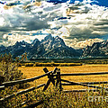 The Tetons by Robert Bales