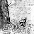 The Teutonic Fox by Del Gaizo