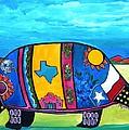 The Texas Armadillo by Patti Schermerhorn