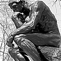 The Thinker In Black And White by Lisa Phillips