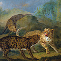 The Three Leopards by Jacques-Charles Oudry