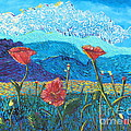 The Three Poppies by Stefan Duncan