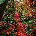 The Trail At Rainbow Falls Washington by Ron  Tackett
